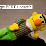 What Can You Do about Google's Recent BERT Update
